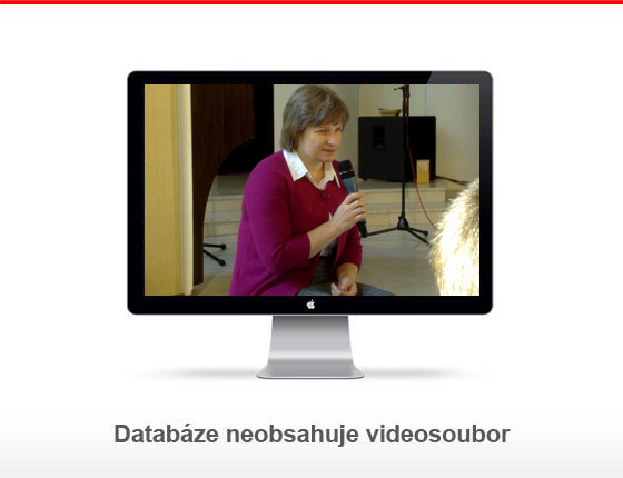 Dp110305-3_archiv_monitor_novideo
